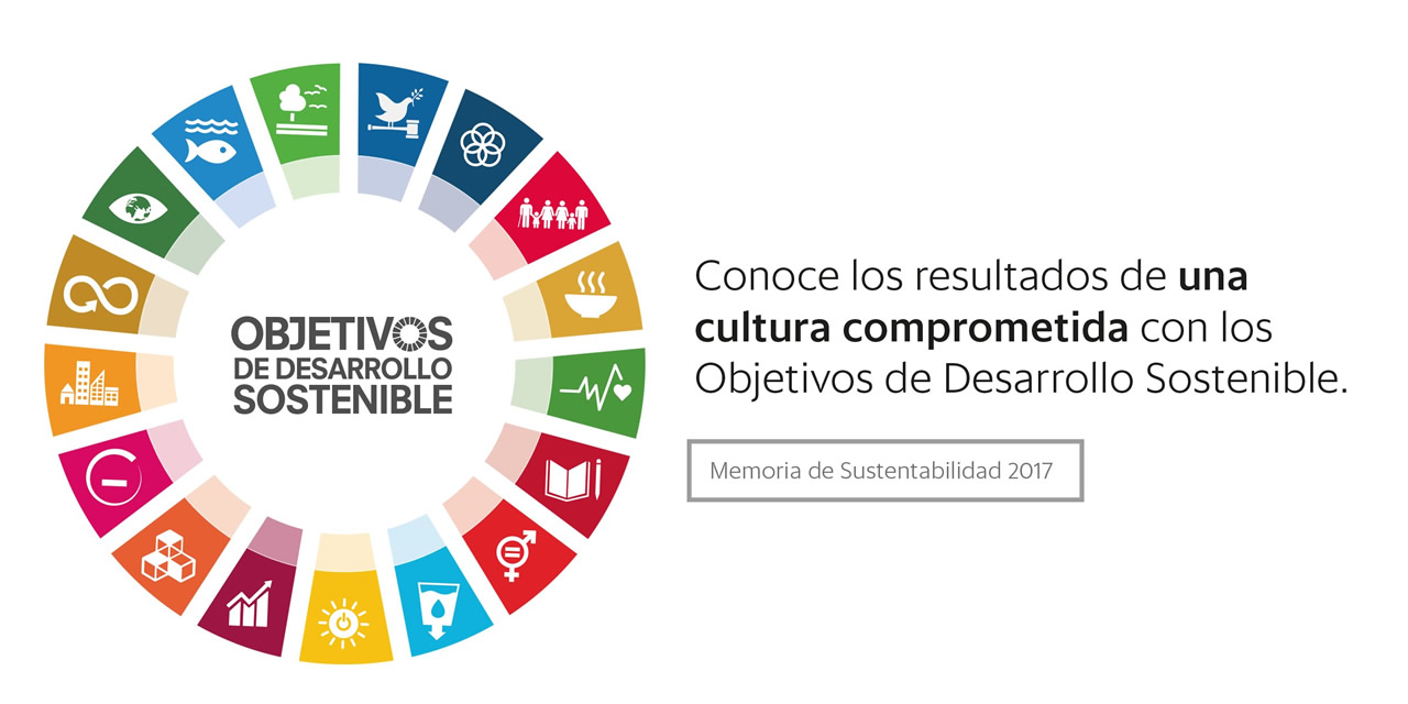 Memoria de sustentabilidad nuvoil 2017